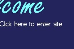 Click here to enter site